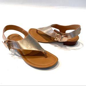 Tommy Hilfiger Rose Gold Metallic Thong Sandals